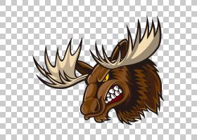 驼鹿驼鹿,机翼,喇叭,野生动物,鹿角,绘图,动画片,麋鹿,鹿,驼鹿,图片
