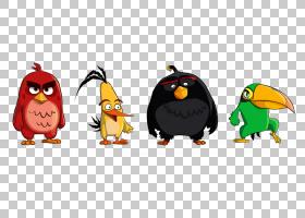 斯特拉・愤怒的小鸟,企鹅,鸟,喙,不会飞的鸟,愤怒的小鸟卡通形象,图片