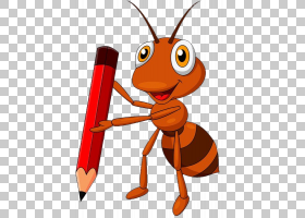 蜜蜂卡通,橙色,害虫,昆虫,传粉者,喙,蜜蜂,线条艺术,绘图,动画片,