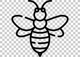 蜜蜂卡通,符号,对称性,线路,线条艺术,黑白相间,蜜蜂,蜂刺,传粉者