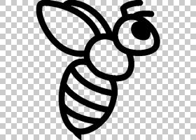 黑白花,黑白相间,线路,圆,符号,叶子,鲜花,植物,线条艺术,大黄蜂,