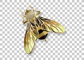 婚礼金币,车身首饰,有色金色,传粉者,结婚戒指,魅力吊坠,钻石,蜜