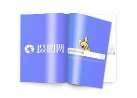 手册杂志模型