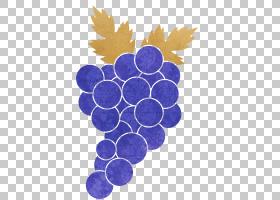 葡萄水果主题创意插画免扣元素