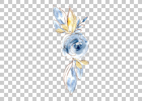 免扣简洁时尚手绘水彩彩铅植物插画元素
