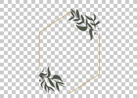 简洁植物叶子边框免抠PNG元素