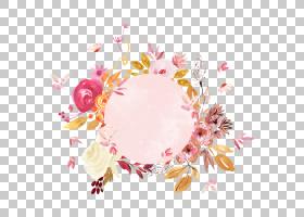 清新植物花卉边框免抠PNG元素