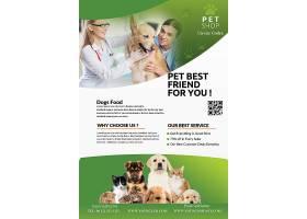 兽医宠物治疗主题海报模板