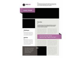简约风企业案例研究范本设计模板
