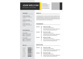 个性简约风创意专业和现代简历设计模板