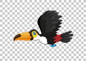 鸟的剪影,机翼,羽毛,喙,豌豆形目,巨嘴鸟,剪影,动画片,鸟,飞行,图片