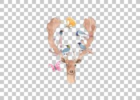鸟剪贴画,驯鹿,鹿,鹿角,麋鹿,麻雀屋,鸟,图片