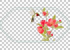 背景海报框,花卉产业,插花,切花,水果,花瓣,食物,种,假期,花,新年