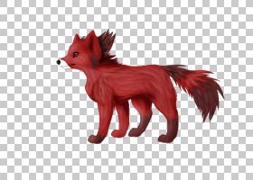狐狸卡通,动物形象,性格,野生动物,动物,宠物,狐狸,马,狗,红狐,图片
