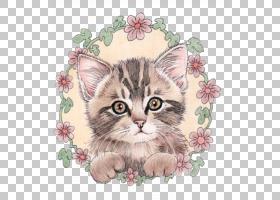 花卉绘画,创意艺术,小猫,爪子,花,小插曲,绘画,教育部,绘图,创造