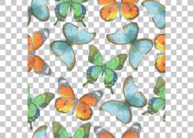 水彩花卉无缝图案背景png (130)