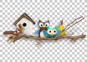 猫头鹰卡通,动物形象,猛禽,喙,玩具,宽屏,目录,桌面隐喻,电脑,桌图片