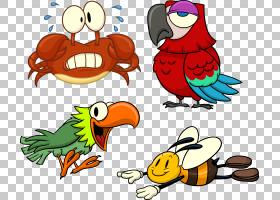 鸟鹦鹉,喙,动物,绘图,鹦鹉,巨嘴鸟,金刚鹦鹉,动画片,相爱的小鸟,图片