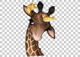 水彩动物,头,脖子,野生动物,长颈鹿科,长颈鹿,十字绣,刺绣,油画,