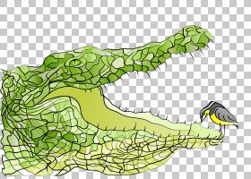 绿草背景,线路,草,鳄鱼,城市设计,种,树,面积,爬行动物,短吻鳄,动图片