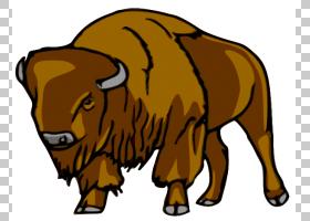 奶牛背景,公牛,喇叭,奶牛,公牛,野生动物,野牛,动画片,绘图,美国