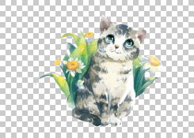 水彩画花卉背景,小猫,花,QVersion,动画片,教育部,绘画,可爱,水彩