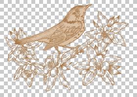 水彩画花卉背景,木材,水彩画,秋天,绘图,花卉设计,花,鸟,