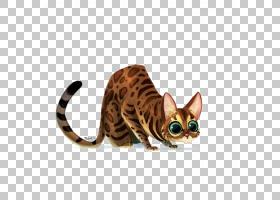 小猫卡通,猫,宠物,绘图,黑猫,可爱,小猫,碎布娃娃,Sphynx猫,奥契图片