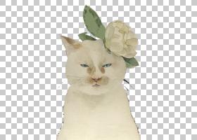 油画之花,小猫,花,亨利・德・图卢塞尔奥特雷克,数码绘画,画家,油