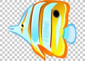 鱼卡通,字体,线路,橙色,喙,黄色,面积,动画片,浅滩和学校教育,小
