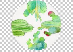 几何形状背景,仙人掌,盘子,毛毛虫,种,叶,绿色,椭圆,飞机,水墨画,
