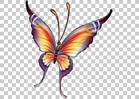 水彩蝴蝶艺术,花,蛾子,机翼,传粉者,帝王蝶,刷脚蝴蝶,飞蛾和蝴蝶,