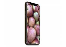 苹果11手机贴图样机