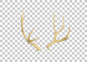 3D背景,材料,贴纸,打靶射箭,3D野猪,美洲狮,骡子,骡鹿,白尾鹿,麋