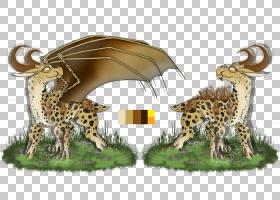 CAT背景,长颈鹿科,动物,野生动物,猎豹,猫,长颈鹿,