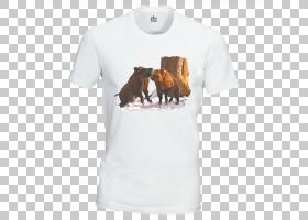 T恤,服装,运动衫,现役衬衫,T恤衫,顶部,阿斯卡里,卡扣紧固件,猎人