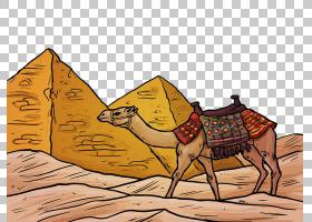 三角形背景,阿拉伯骆驼,骆驼般的哺乳动物,牲畜,三角形,埃及,安提