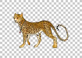 卡通猫,动物形象,尾巴,野生动物,动物,彪马,鼻部,猫,捷豹,猎豹,豹