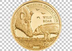 卡通金奖,奖牌,现金,金属,钱,货币,金币,美国金鹰,美元硬币,验证