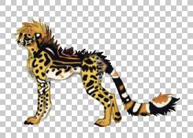 狮子卡通,动物形象,尾巴,野生动物,艺术家,动物,狮子,猫,猎豹,