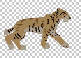 狮子卡通,尾巴,动物形象,彪马,野生动物,豹子,非洲豹,洞穴壁画,绘