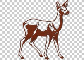 驯鹿卡通,喇叭,动物形象,麋鹿,尾巴,麝香,鹿角,驯鹿,骆驼般的哺乳