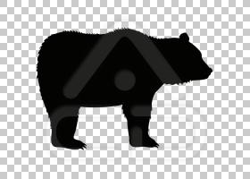 树懒卡通,树懒熊,黑白相间,野生动物,公猪,动物形象,攻丝,鼻部,棕