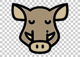 猪卡通,牲畜,穗科,头,动画片,鼻部,猪,CDR,绘图,野猪,