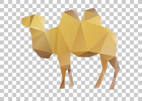 纸张背景,艺术纸,黄色,骆驼般的哺乳动物,牲畜,三角形,动画,动物,