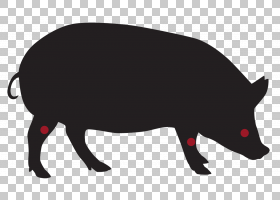 猪卡通,牲畜,野生动物,财物,鼻部,野猪,猪,CDR,食物,向量值函数,