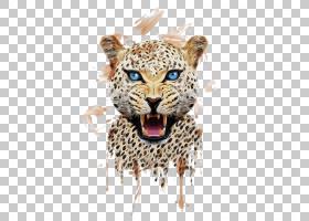 狮子卡通,老虎,珠宝首饰,野生动物,剪影,动物印记,动物,狮子,T恤