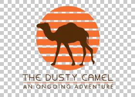 消防徽标,鼻部,面积,线路,桔黄色的,阿拉伯骆驼,骆驼般的哺乳动物