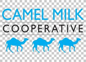 闪光徽标,线路,徽标,骆驼般的哺乳动物,文本,面积,牲畜,蓝色,价格
