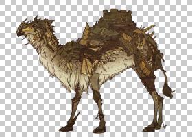 像哺乳动物一样的巨人骆驼的影子,骆驼般的哺乳动物,奇妙的艺术,